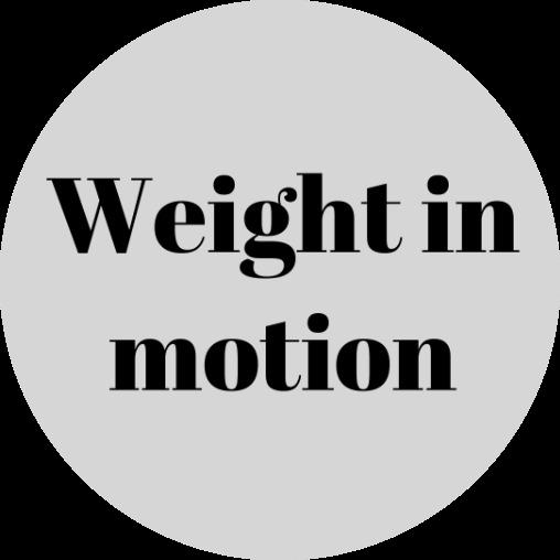 Способы габаритно-весового контроля, контроль веса автомобиля, система ВИМ, Wim, weight in motion, система взвешивания в движении