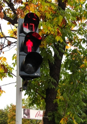 Traffic signal led light with a countdow timer in Kyiv