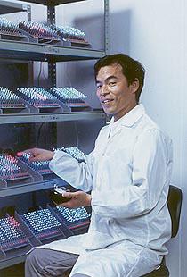 Лишь в 1991 году японский ученый доктор Шуджи Накамура из компании Nichia Chemical смог вырастить кристаллы на нитриде индия-галлия, испускавшие свет в синей части цветового диапазона.